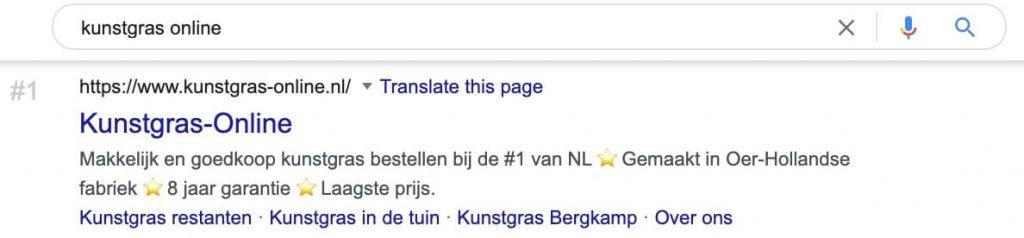 Screenshot SERP Google first result query 'kunstgras online'